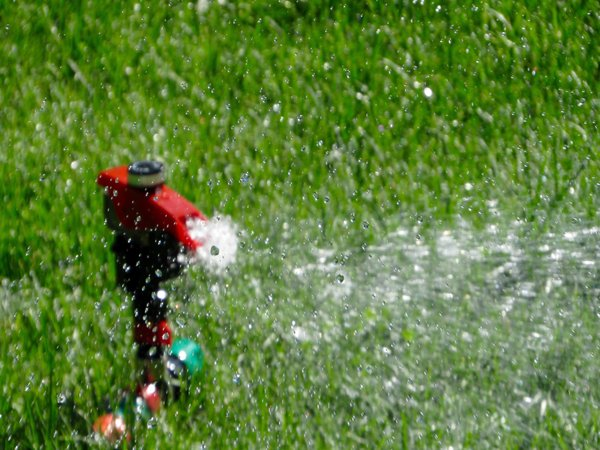 sprinkler-system